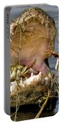Gator Grabs Lunch Portable Battery Charger