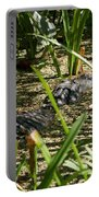 Gator Sunning Portable Battery Charger