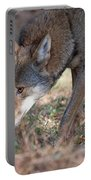 Gentle Wolf Portable Battery Charger