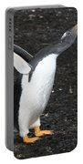 Gentoo Penguin With Something To Say Portable Battery Charger