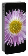 Gerber Daisy In Black Background Portable Battery Charger