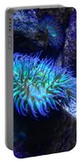 Giant Green Sea Anemone Portable Battery Charger