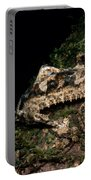 Giant Leaf Tail Gecko Portable Battery Charger