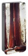 Giant Sequoia Portable Battery Charger