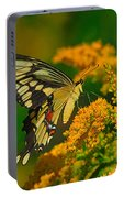 Giant Swallowtail On Goldenrod Portable Battery Charger