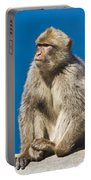 Gibraltar Barbary Macaque Macaca Portable Battery Charger