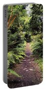 Glanleam, Co Kerry, Ireland Path In The Portable Battery Charger