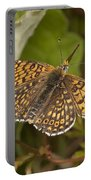 Glanville Fritillary Portable Battery Charger