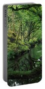 Glengarriff River, County Cork, Ireland Portable Battery Charger