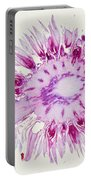 Globe Thistle Flower Lm Portable Battery Charger