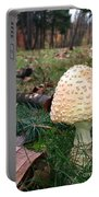 Gnomes Eye View Portable Battery Charger by Trish Hale