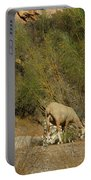 Goat Meeting In Spain Portable Battery Charger