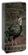 Gobble Time Portable Battery Charger