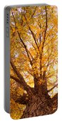 Golden Autumn View Portable Battery Charger