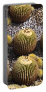 Golden Barrel Cactus 2 Portable Battery Charger