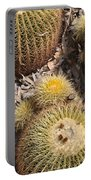 Golden Barrel Cactus 3 Portable Battery Charger