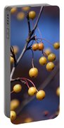 Golden Berries Portable Battery Charger