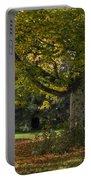 Golden Cappadocian Maple. Portable Battery Charger