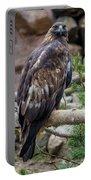 Golden Eagle Portable Battery Charger