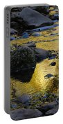 Golden Fall Reflection Portable Battery Charger
