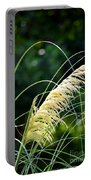Golden Feather Portable Battery Charger