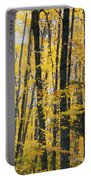 Golden Forest Portable Battery Charger