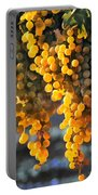 Golden Grapes Portable Battery Charger by Elaine Plesser