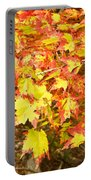 Golden Maple Leaves Portable Battery Charger