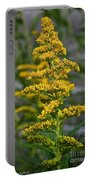 Golden Rod Portable Battery Charger