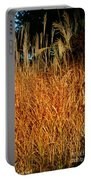 Golden Silver Grass Portable Battery Charger