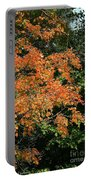 Golden Tree Moment Portable Battery Charger