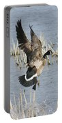 Goose Landing Portable Battery Charger