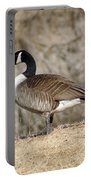 Goose Standing Still Portable Battery Charger