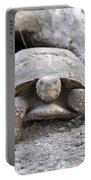 Gopher Tortoise Portable Battery Charger