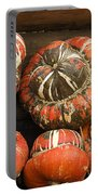Gorgeous Gourds Portable Battery Charger