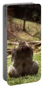 Gorilla At Peace Portable Battery Charger