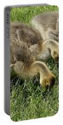 Goslings 1 Portable Battery Charger