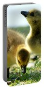 Goslings 6 Portable Battery Charger
