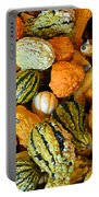 Gourdgeous Portable Battery Charger by Kevin Fortier