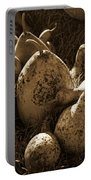 Gourds In Sepia Portable Battery Charger