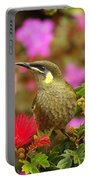 Graceful Honeyeater Portable Battery Charger