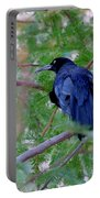Grackle On A Branch Portable Battery Charger