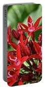 Graffiti Red Lace Portable Battery Charger