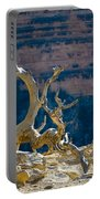 Grand Canyon Dead Tree Portable Battery Charger