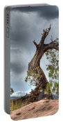 Grand Canyon Facing The Storm Portable Battery Charger