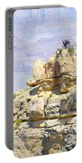 Grand Canyon Overlook Portable Battery Charger