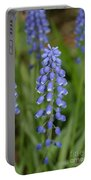 Grape Hyacinths Portable Battery Charger