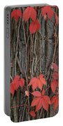 Grape Leaves On Column Portable Battery Charger