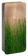 Grass And Stucco Portable Battery Charger