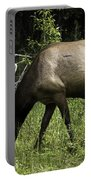 Grassland Grazing Portable Battery Charger